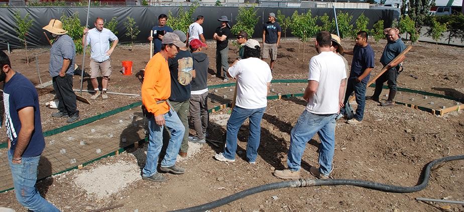 Group of construction and horticulture students forming a sidewalk in the Arboretum