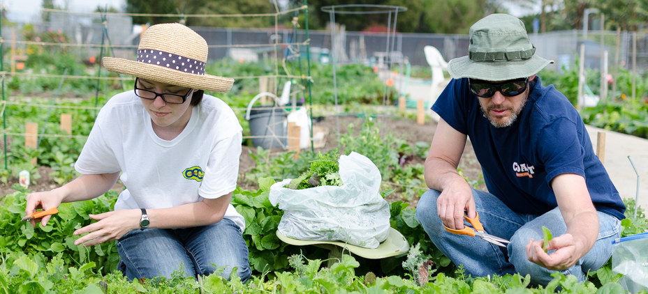 Two students working in the Horticulture Garden Lab